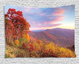 Ambesonne Apartment Decor Collection, Sunrise with Stunning Sky Colors in Autumn Falls at South Western Village Scenery, Bedroom Living Room Dorm Wall Hanging Tapestry, 80 X 60 Inches, Red Yellow Blue