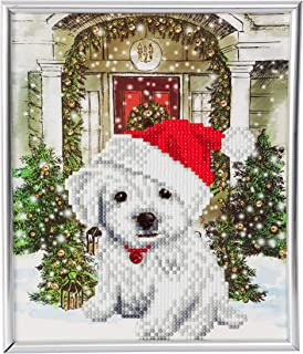 Festive PUP Crystal Art Picture Frame DIY Craft Kit 5D Diamond Art in Silver Frame, 21 x 25 cm (Approx. 8 x 10 in.)