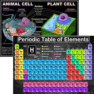Periodic Table and Cells Science Posters - Laminated 14x19.5 - Educational Charts, Classroom Posters and Decorations, Back...