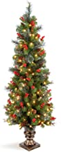 National Tree 5 Foot Crestwood Spruce Entrance Tree with Silver Bristles, Cones, Red Berries and 150 Clear Lights in Decor...