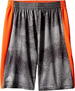 Fusion Shorts (Toddler/Little Kids)