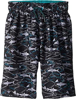 Speedo Kids Sharkamo Volley Shorts (Little Kids/Big Kids)