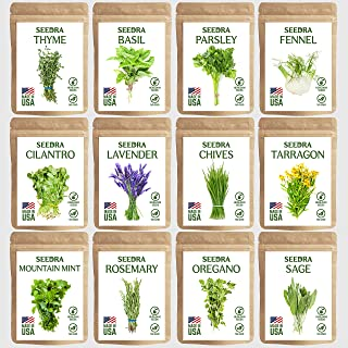 SEEDRA 12 Herb Seeds Variety Pack Indoor and Outdoor Planting - 3500+ Seeds - Non GMO and Heirloom - Basil, Thyme, Lavende...