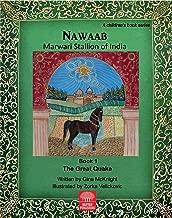 Nawaab: Marwari Stallion of India (The Great Quake Book 1)