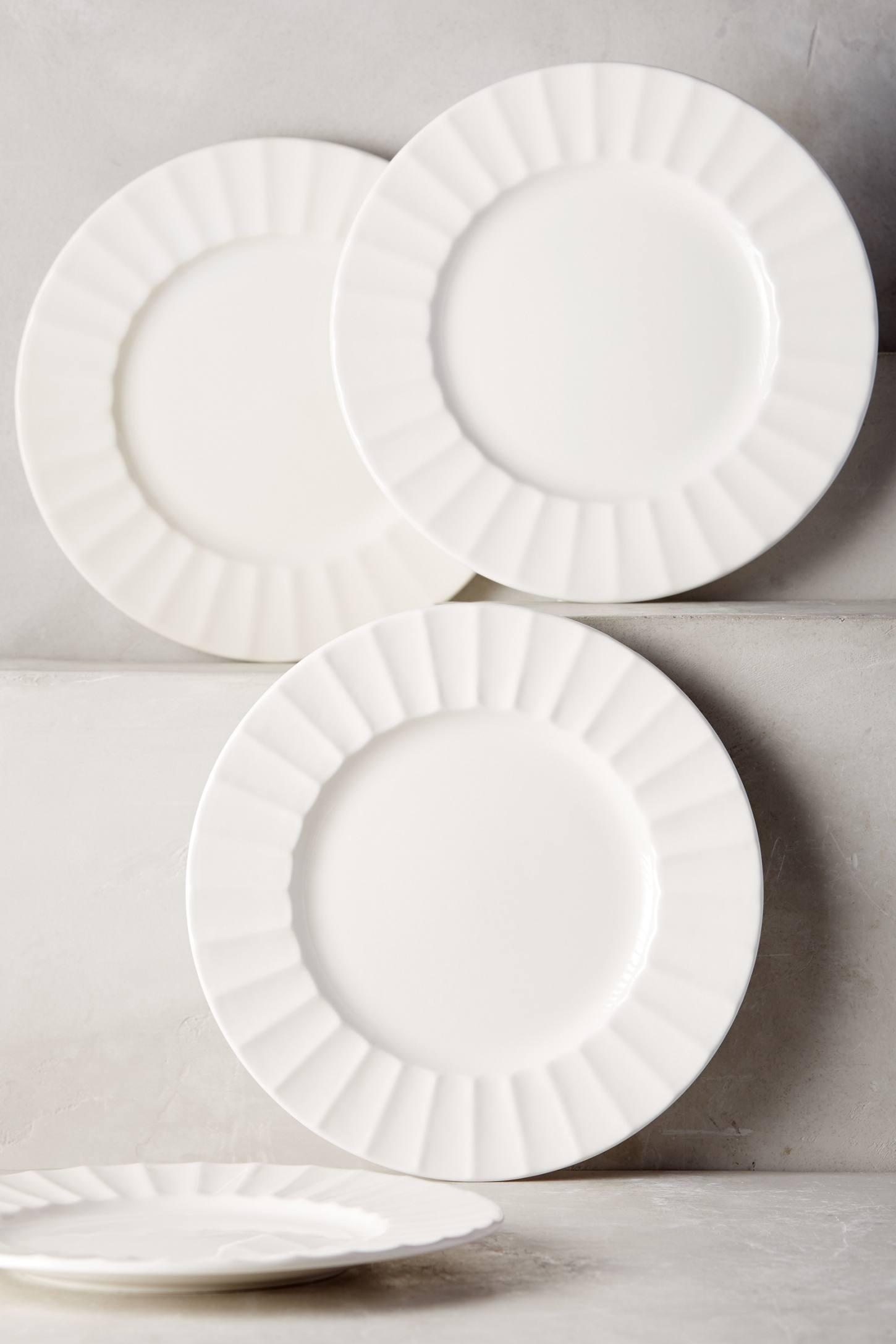 Walker mcewan and anthony cervo wedding registry amazon latte dinner plate set anthropologie junglespirit Gallery