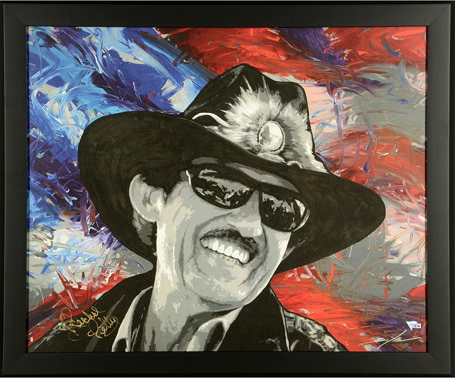 Richard Petty Framed Autographed 22.8