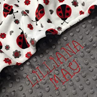 Ladybug blanket, Personalized Baby Blanket, Lady Bug Baby Blanket, baby shower gift, Double Minky Plush baby blanket