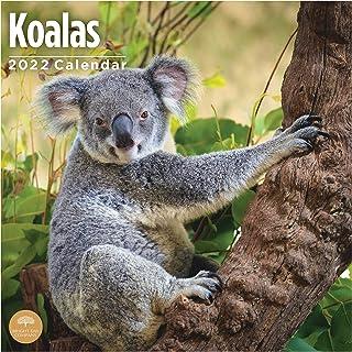 2022 Koalas Wall Calendar by Bright Day, 12 x 12 Inch, Cute Forest Animals