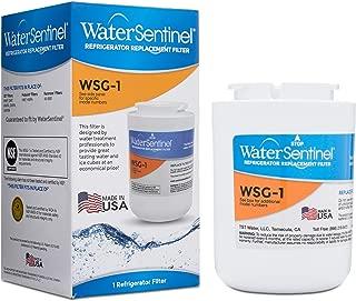 Best water sentinel wsg 1 Reviews