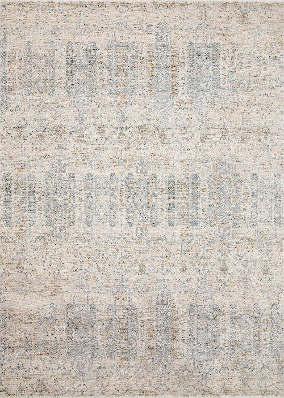 Loloi Pandora Collection Distressed Persian Vintage Area Rug, 2'0