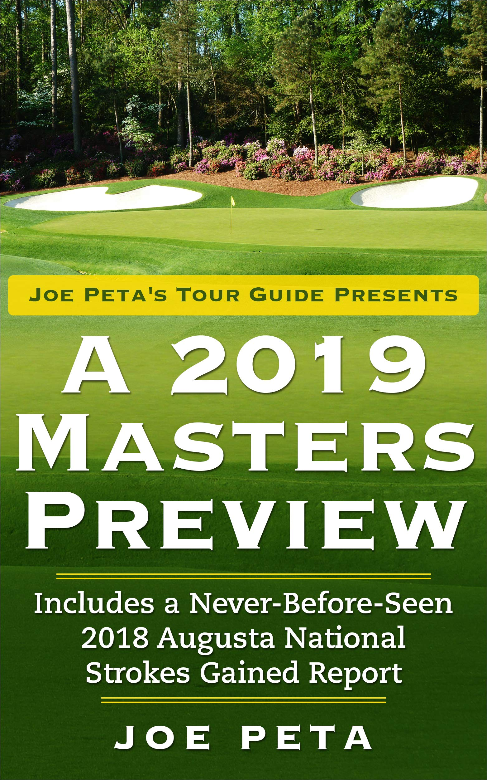 Download Joe Peta's Tour Guide Presents A 2019 Masters Preview (English Edition) 