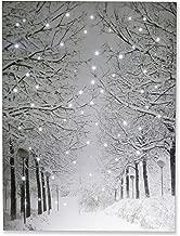Best winter wonderland poster Reviews