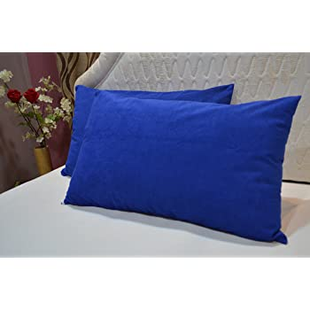 Trance Home Linen Cotton Waterproof and Dustproof Pillow Protector (Blue, 18x28 Inches)
