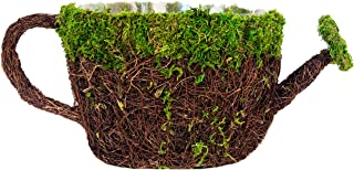 """SuperMoss (55261) 9"""" Deco Watering Can Planter Basket, Large"""