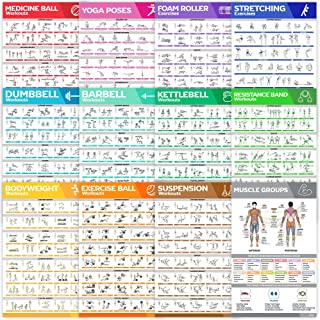 12-Pack Laminated Large Workout Poster Set - Perfect Workout Posters For Home Gym - Exercise Charts Incl. Dumbbell, Yoga P...