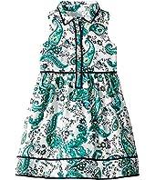 Button Front Sleeveless Ruffle Dress (Toddler/Little Kids/Big Kids)