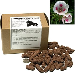 Farewell-to-Spring (Godetia) Guerrilla Droppings - Seed Pellets for Guerrilla Gardening (Clarkia Amoena)