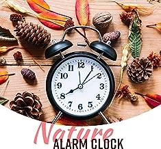 Nature Alarm Clock: Wake Up Sounds, Gentle Awakening & Happy Morning
