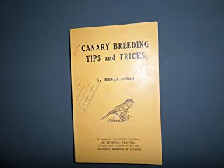 canary breeding tips