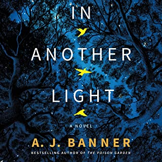 In Another Light: A Novel