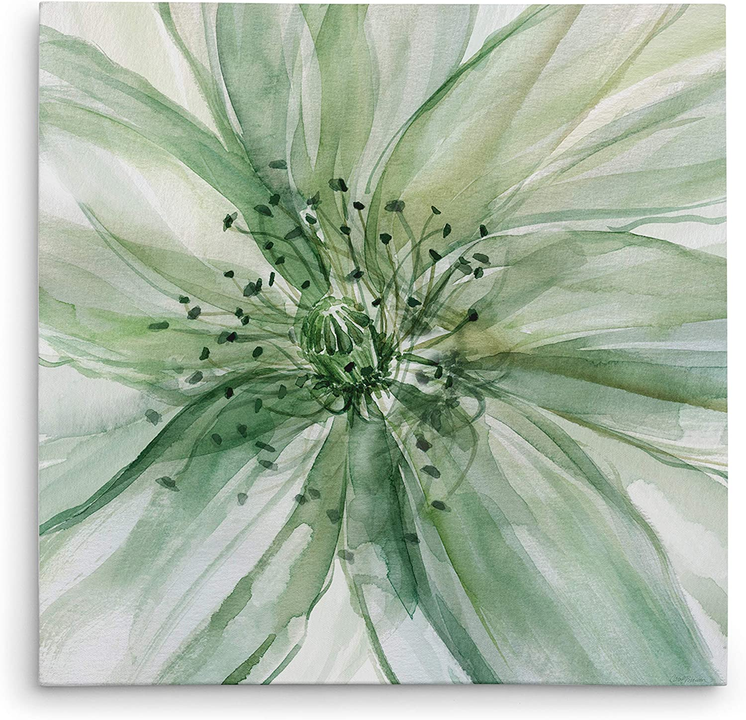 Reservation WEXFORD HOME Macro Sage Flower II Wrapped Canvas Wall Ar Gallery Today's only