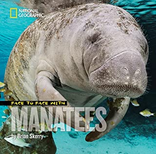 Best face to face with manatees Reviews