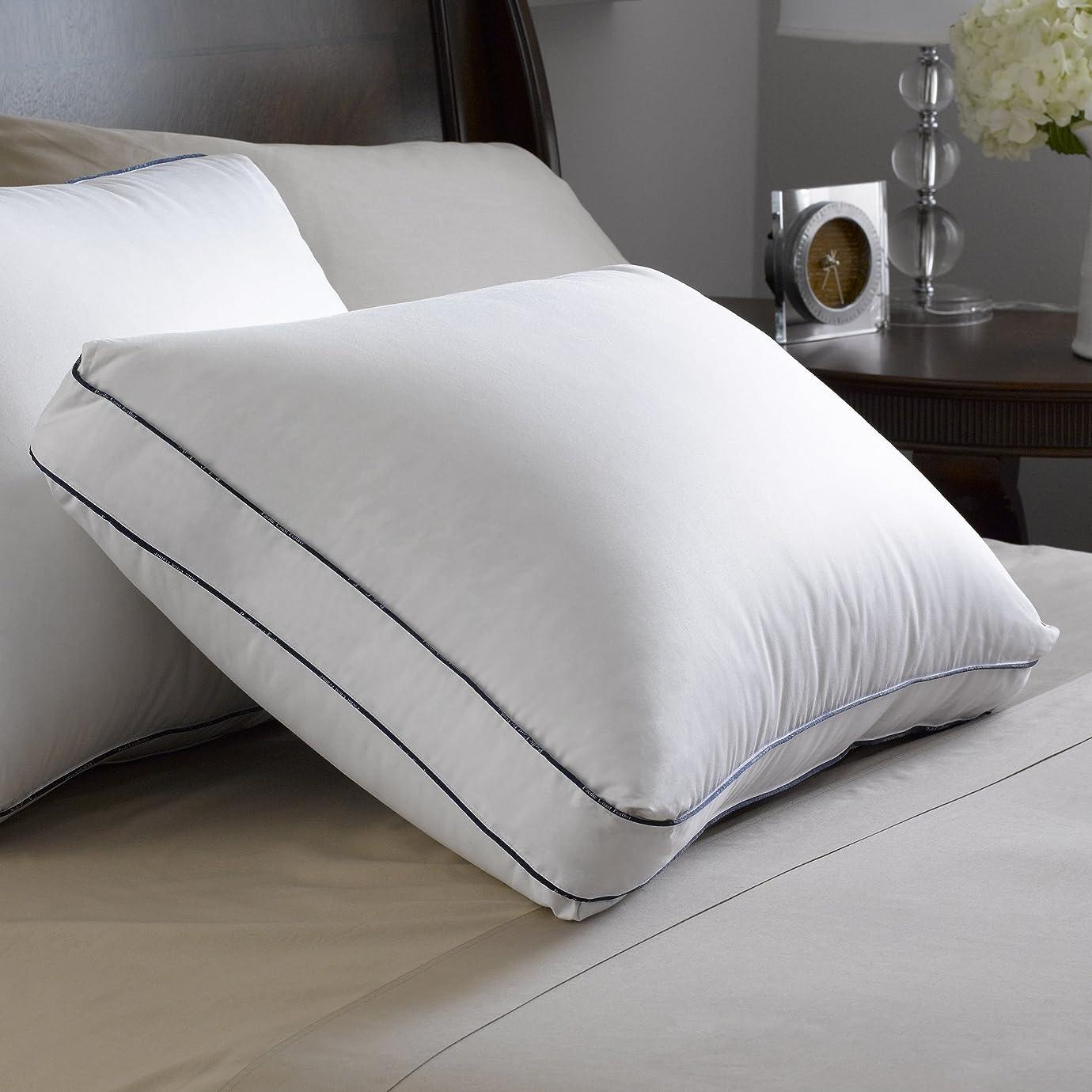 からに変化するケントリースPacific Coast高級枕(アレルギーフリー?–?超クリーンなGoose Down、エジプト綿生地バリア織り、SuperLoftデザインで2インチマチ付き) Standard [Set of 10] ホワイト 03062017-24817