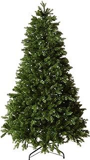 Best big tree brand Reviews