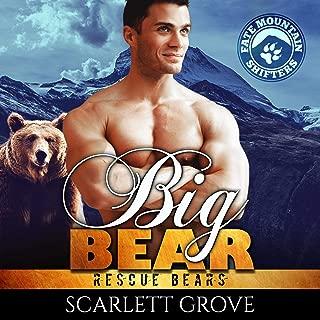 Big Bear: Rescue Bears, Book 3