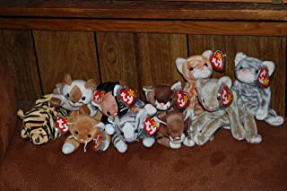 (9) Ty Beanie Baby Cats Amber,Chip,Nip,Pounce,Prance,Scat,Silver,Snip,Stripes,