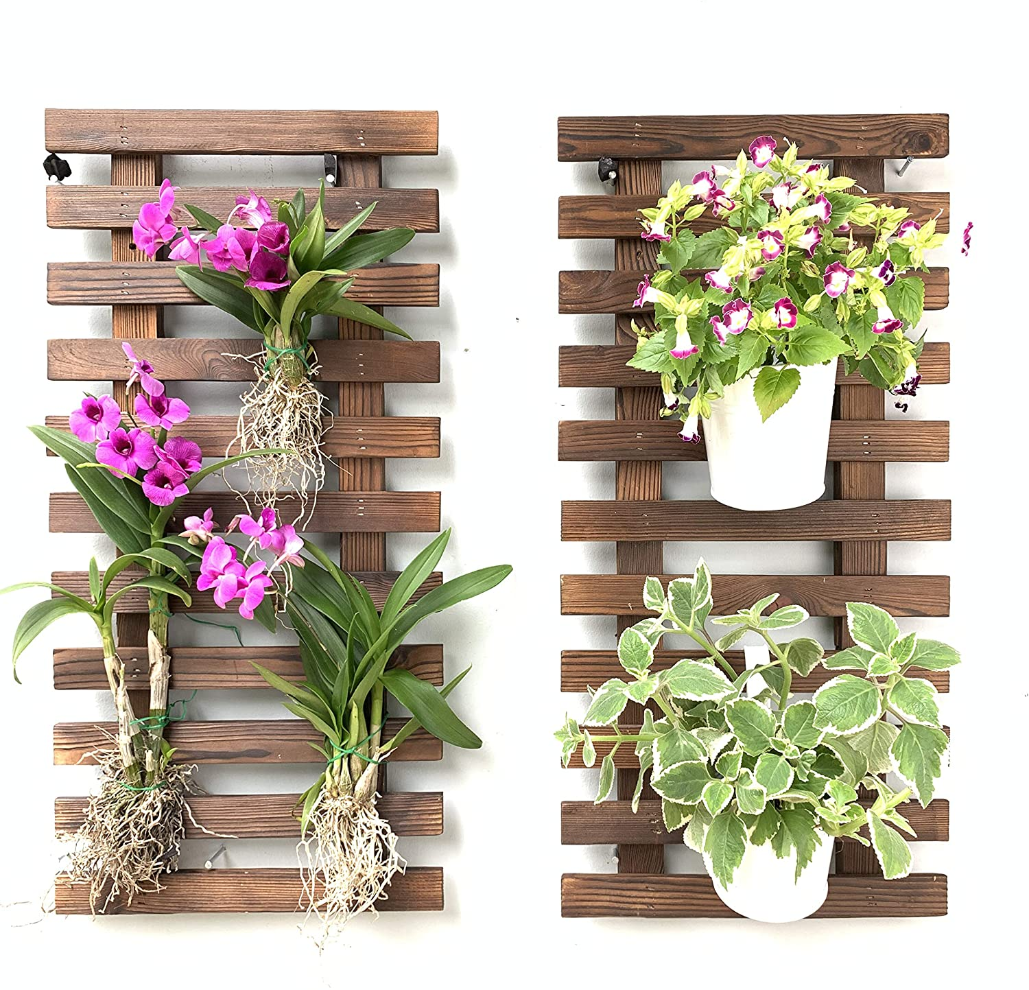 Wall Planter – 16 Pack Wooden Hanging Planters for Indoor Plants, Wall Mount  Plant Stand Ladder, Outdoor Vertical Garden, Unique Live Orchid Planter ...