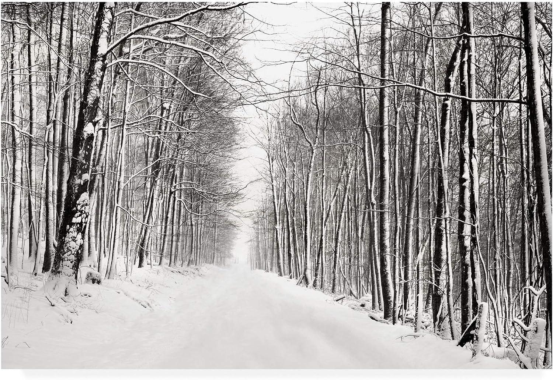 Trademark Fine Art A Snowy Walk III by James Mcloughlin, 12x19