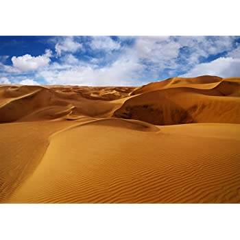 wandmotiv24 Carta da parati Deserto deserto paesaggio sabbia XXL 400 x 280 cm dune M0507 Sahara 8 pezzi Murales sfondi motivazionali non tessuti Natura