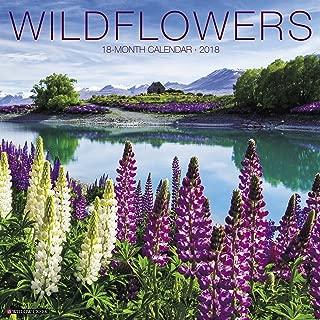 Best wildflower calendar 2018 Reviews