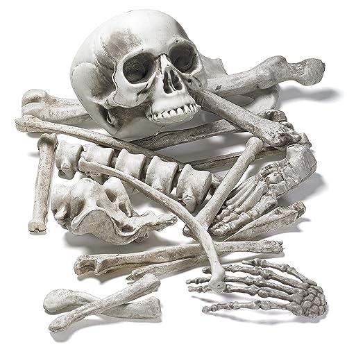 Prextex Bag of Skeleton Bones and Skull for Best Halloween Decoration and  Spookiest Graveyard Scene 12e55705138