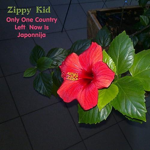 Amazon.com: Only One Country Left Now Is Japonnija: Zippy ...
