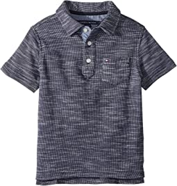 Tommy Hilfiger Kids - Seed Polo (Toddler/Little Kids)