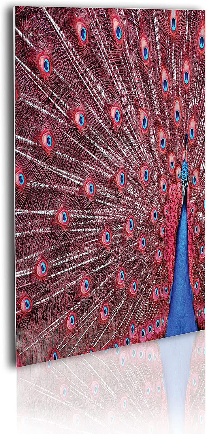 Courier shipping free shipping Ambesonne Peacock Acrylic Glass Wall Male Displays His Art Rare Plum