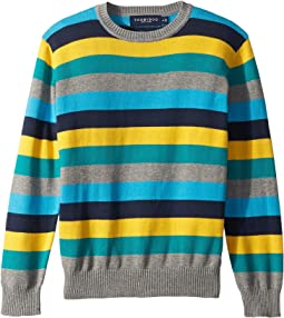 Knit Crew Neck Sweater (Toddler/Little Kids/Big Kids)