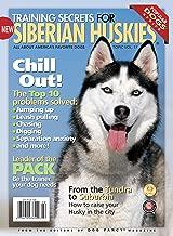 Training Secrets for Siberian Huskies