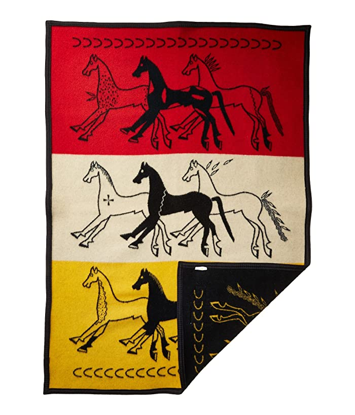 American Indian College Fund Baby Blanket (Future of the Plains) Blankets