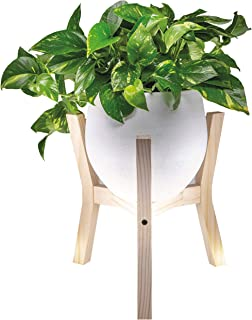 Stylish Modern Plant Pot Stand - Indoor Outdoor Wood Flower Stands (Planter and Pot NOT Included) for House, Garden, Patio | Holder for Ceramic Pots, Plants, Planters up to 10 inches (Natural Wood)