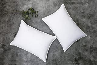 SNUG&COZY Grey Goose Feather Down Pillows for Sleeping(2 Pack)- Standard Size(20IN×26IN), Goose Feather&Down Filling, 100%...