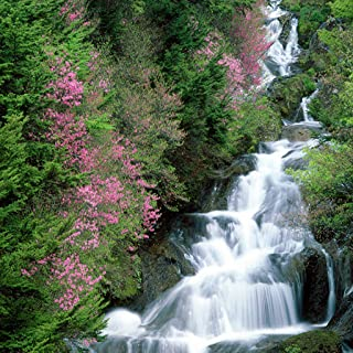 Waterfall Live Wallpaper Free