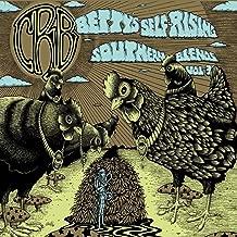 chris robinson brotherhood betty's blends vol 3