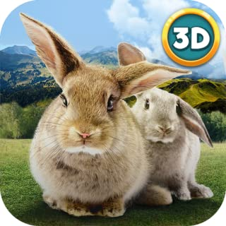 rabbit simulator 3d
