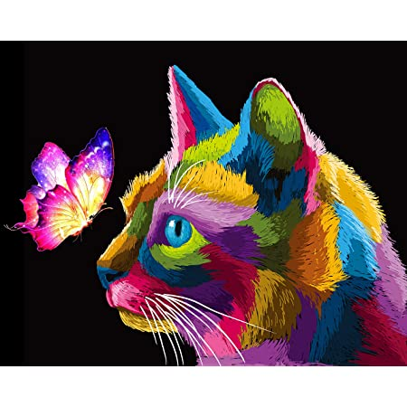Colorful Cat Number Painting DIY Craft Kits 16x12 Inch Acrylic Oil Painting On Canvas with Framed- Painting Set for Boy Tookeen Paint by Numbers Kit for Kids Girl Beginner Adult