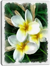 Design Art Cute Frangipani Flowers Watercolor Floral on Canvas Art Wall Photgraphy Artwork Print