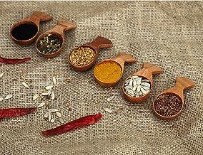 SKAFA Masala Spoon Set of 6 Ice Cream Salt Spoon Honey Coffee Tea Sugar Salt Jam Mustard Spoons