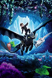 newhorizon How to Train Your Dragon The Hidden Movie Poster 17'' x 25'' NOT A DVD